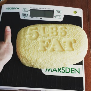 5lb of fat with my hand for comparison!